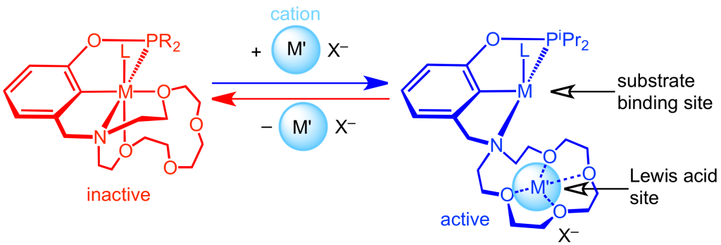 photohydride2